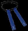 Flag belt
