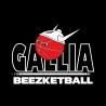 T-shirt homme courtes manches Gallia Beez